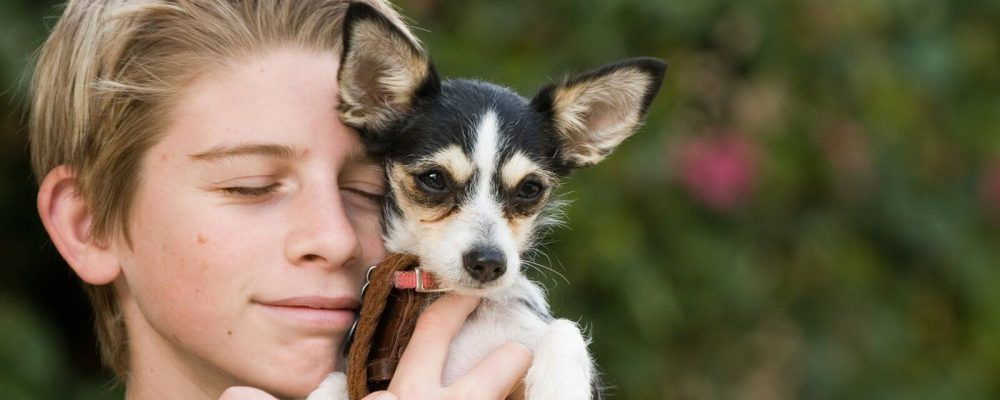 boy-and-his-dog-1375215